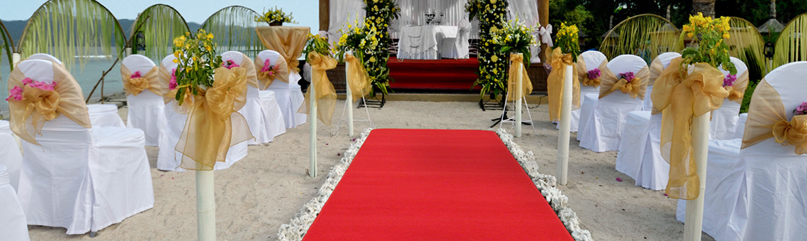 Event Runners Red Carpet Event Runners Wedding Runners Outdoor